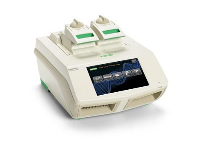 bio rad real time pcr pdf