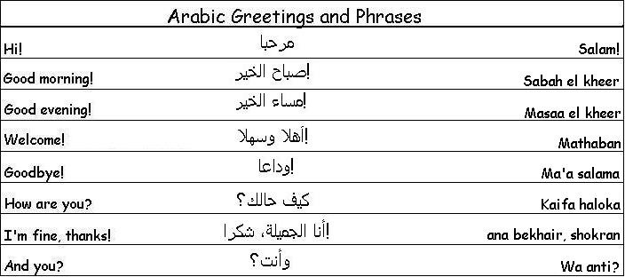 english vocabulary words with meaning in arabic pdf