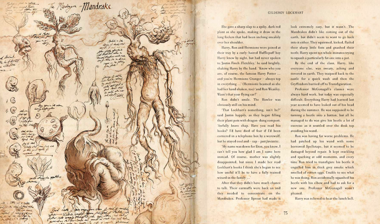 where can i find harry potter illustrated edition pdf